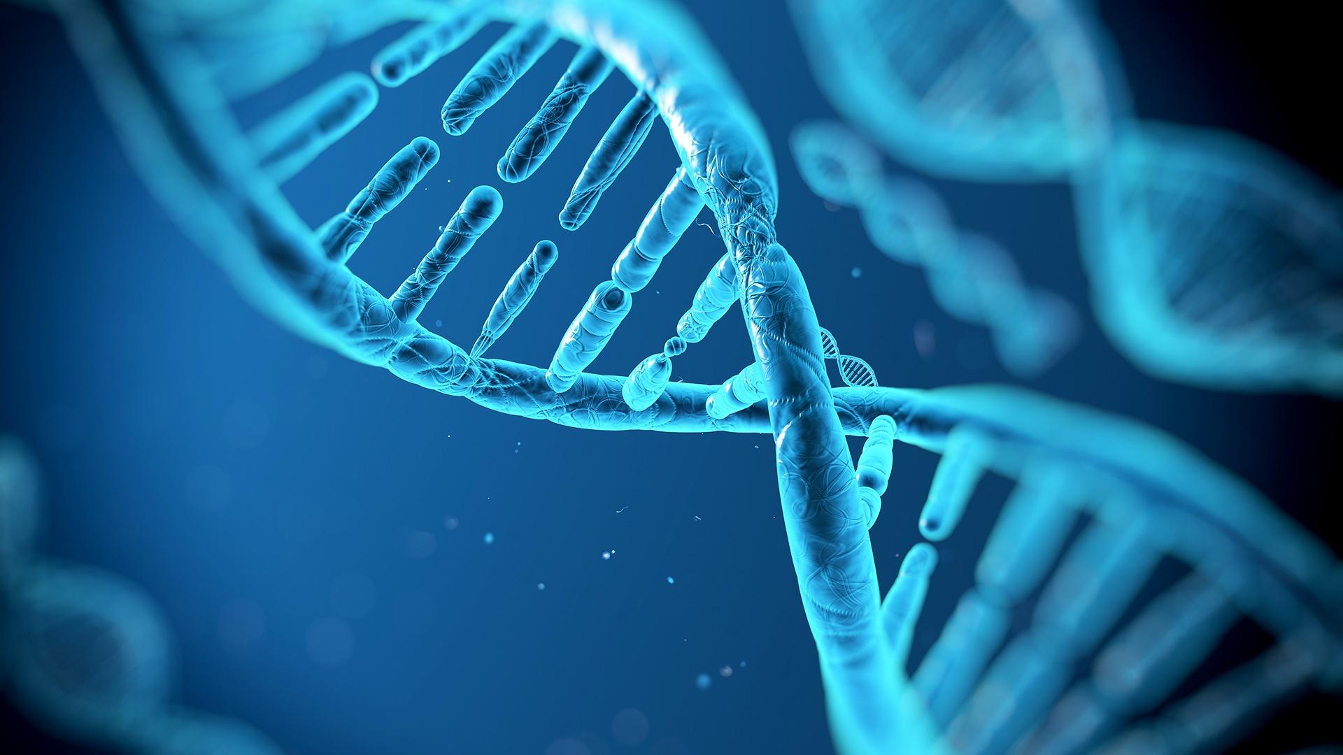 「遺傳」的圖片搜尋結果